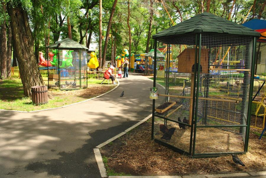 Публичный зоопарк на улице