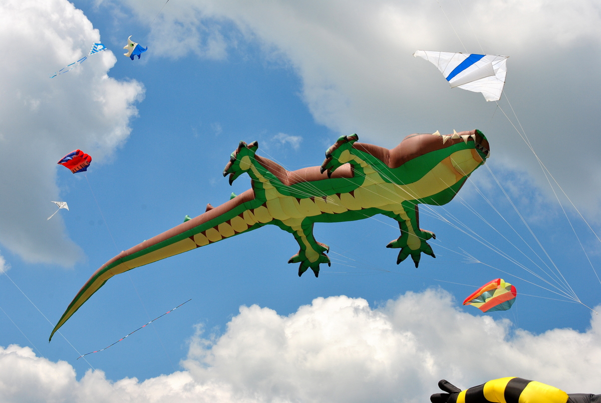 Tryhutty International Kite Festival 2017