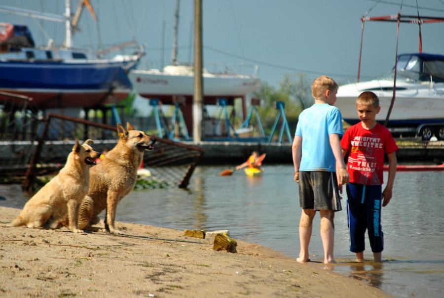 На березі Лиману біля Богоявленського яхт-клубу