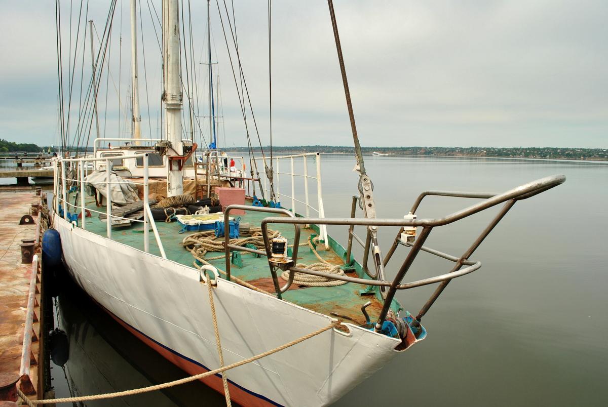 DSC_8593